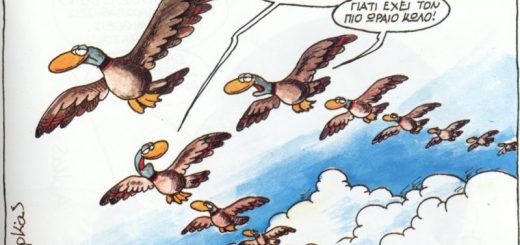 1._Arkas_Birds